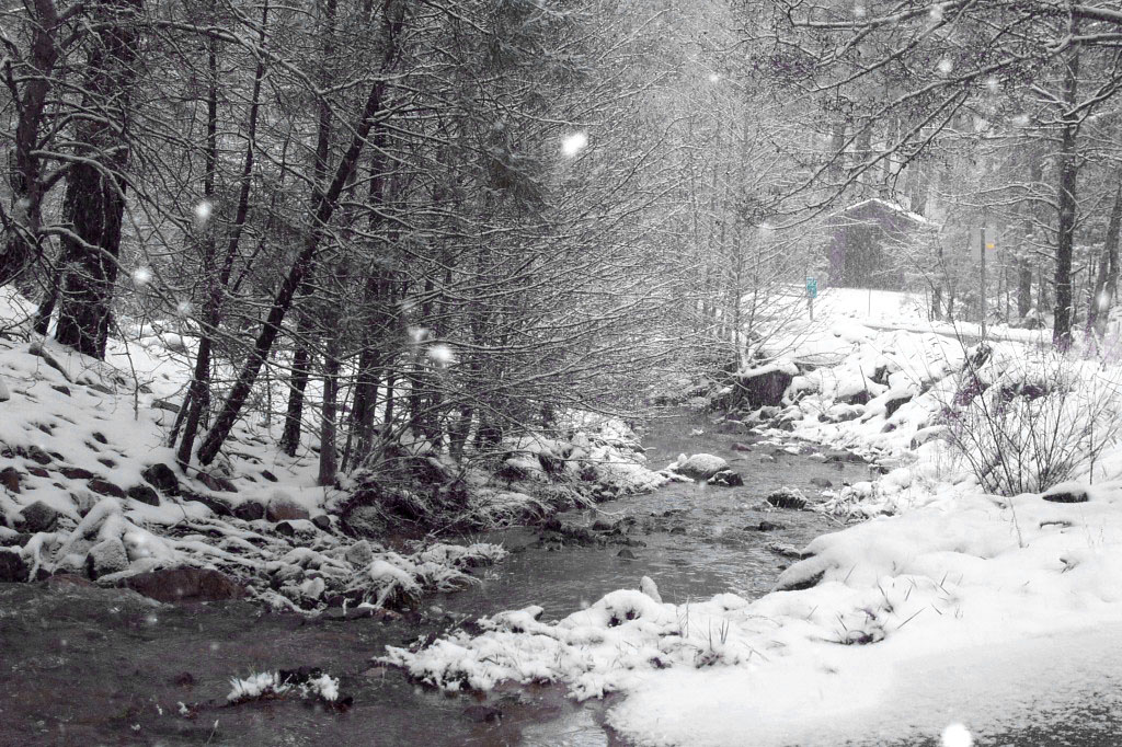 Lynk Creek in Winter