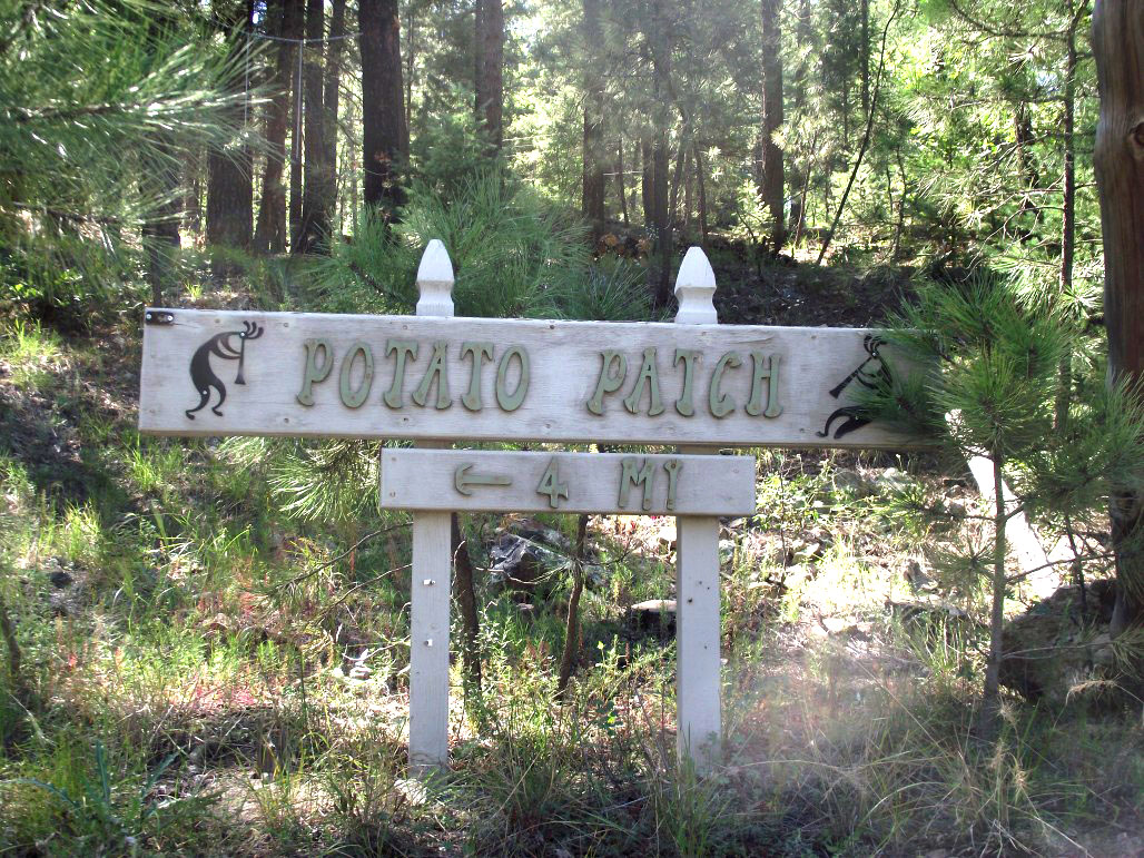 This way to Potato Patch